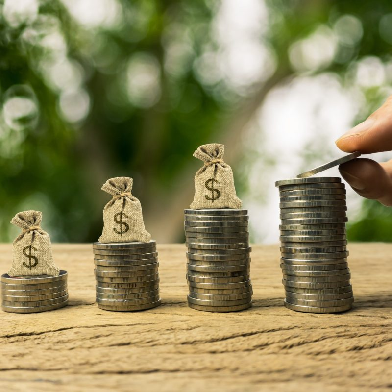 Growing time value of money, investment, wealth financial concept
